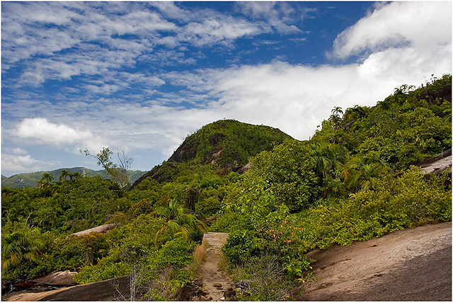 Seychelles - Mahe - Way to Anse Major